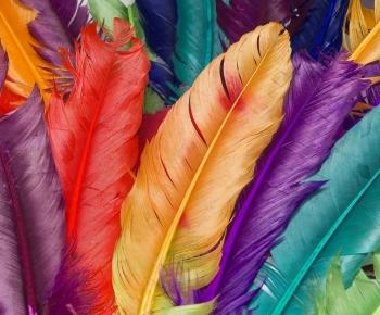 De invloed van kleuren op je gemoedstoestand
